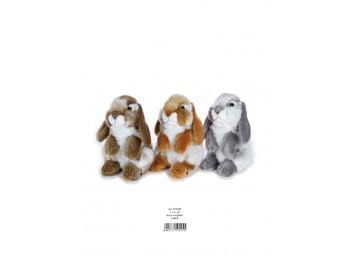 Jucarie Plus Venturelli - Iepure Cu Urechi Lungi - AV710105